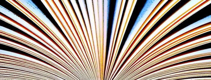 BeeLine Book