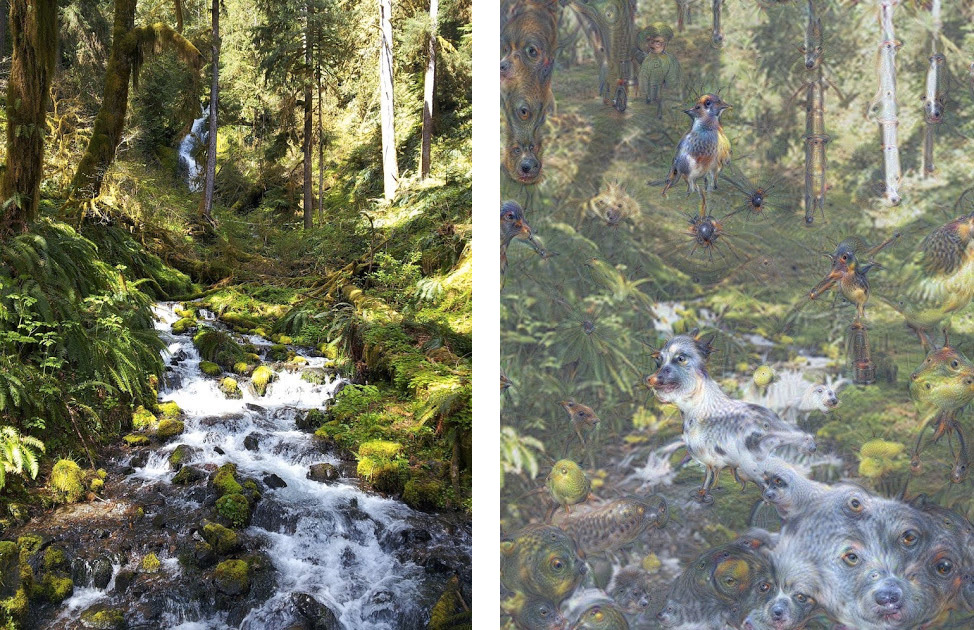 The original waterfall becomes an enchanted woodland glade. Images via Google Inceptionism Gallery