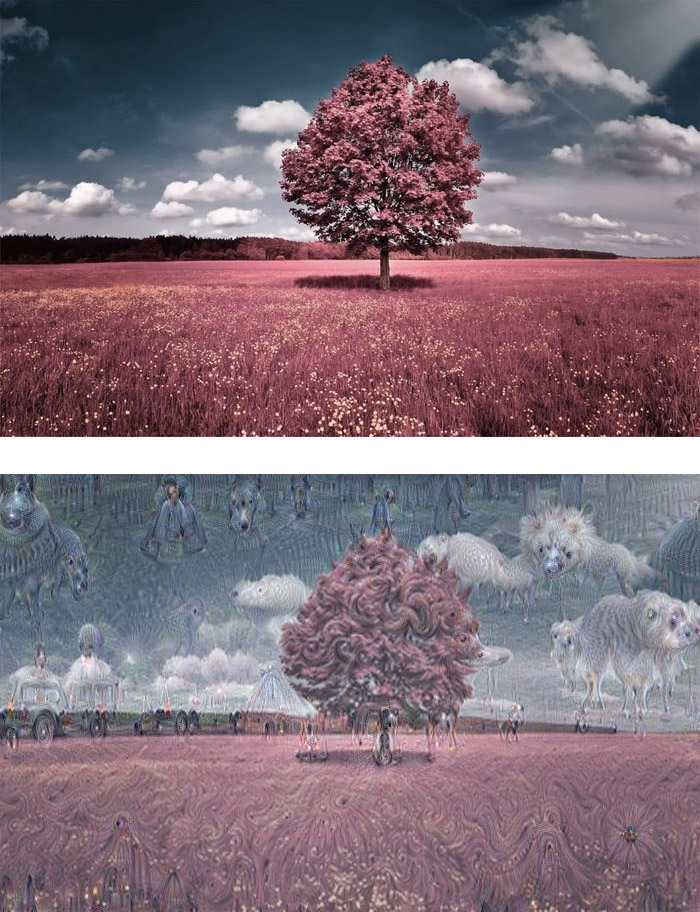 "Original ""red tree"" image run through an artificial neural network, asking it to recognize images not contained in it. Images via Google Inceptionism Gallery"