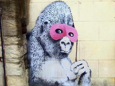 gorilla_feature